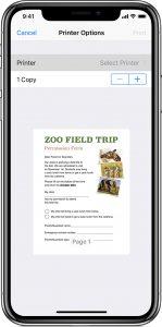 print options iphone
